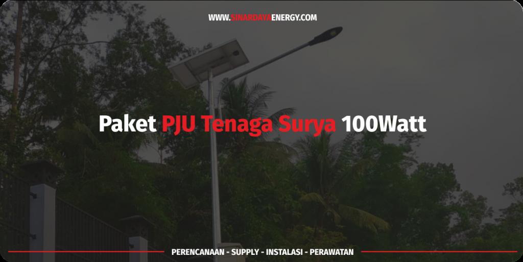 jual Paket PJU Solarcell Tenaga Surya 100 watt