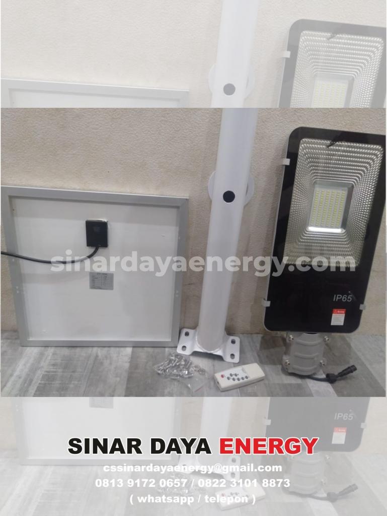 harga PJU Tenaga Surya 2in1 100watt