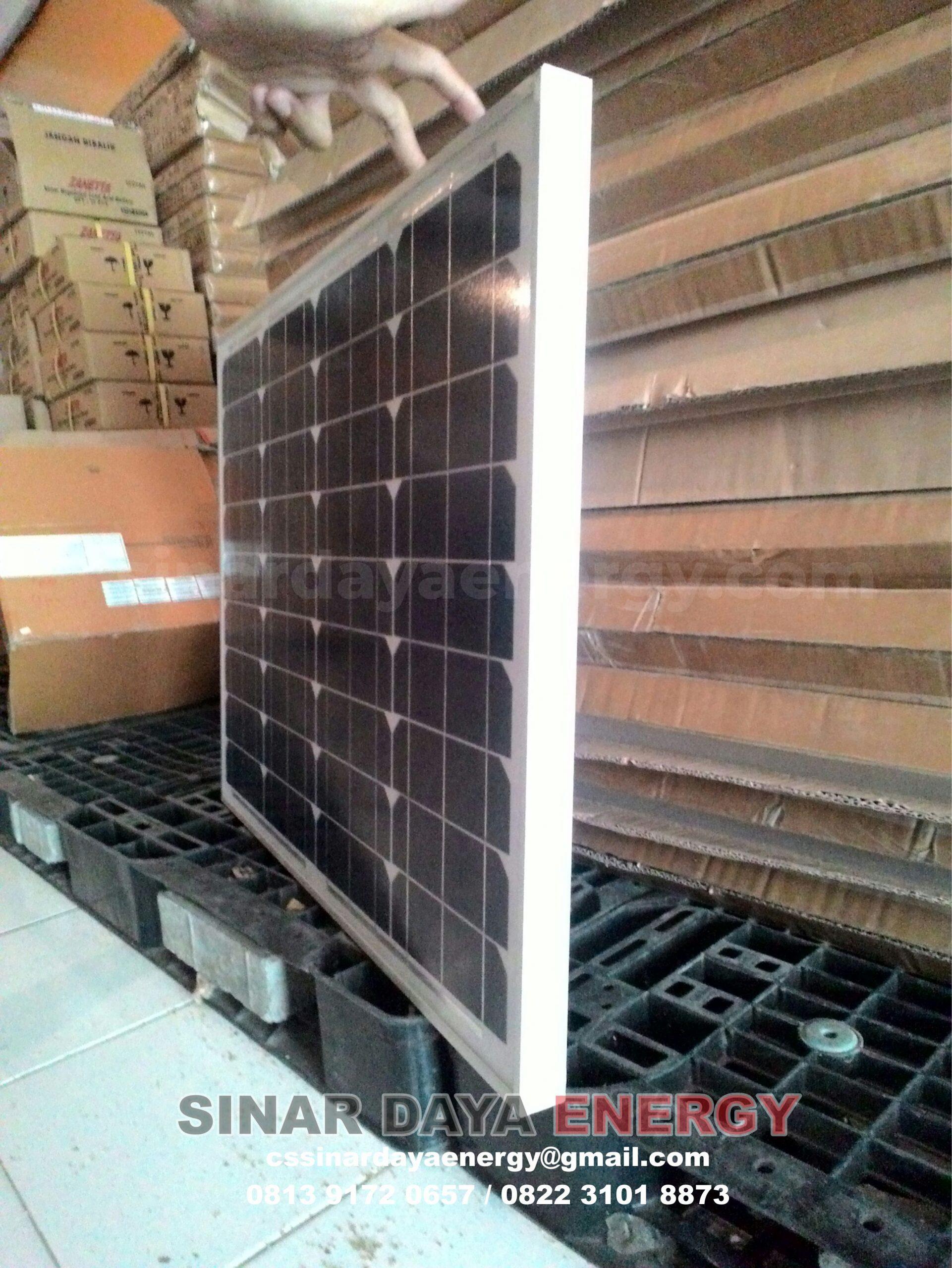 harga solarcell surya 50wp